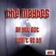 The maybes - All You Got / Won't Go By - BFW recordings netlabel